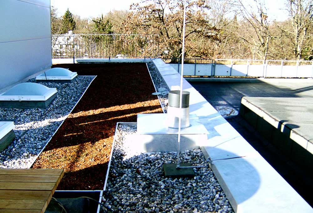 Dachdecker Muenchen Abdichtungen Dachbegrünung